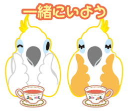 Valentine.Sulphur-Crested Cockatoo2 sticker #15026783