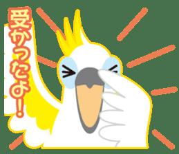 Valentine.Sulphur-Crested Cockatoo2 sticker #15026789