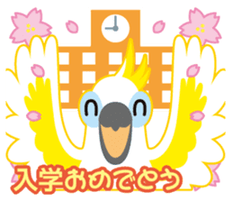 Valentine.Sulphur-Crested Cockatoo2 sticker #15026792