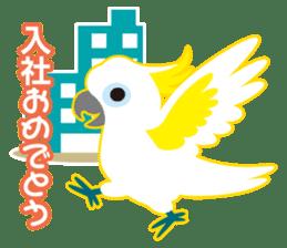 Valentine.Sulphur-Crested Cockatoo2 sticker #15026793