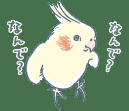 Funiochi the Cockatiel sticker #15026844
