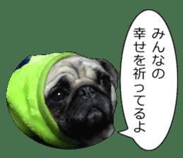 Pretty Pug!5 sticker #15032630