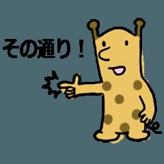 Short neck giraffe