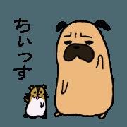 สติ๊กเกอร์ไลน์ Everyday life of a pug,sometimes hamster