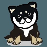 สติ๊กเกอร์ไลน์ wankodo black shiba1