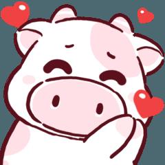 N9: น้องโควี่ วัวน้อย :)