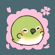 สติ๊กเกอร์ไลน์ mochimochikotori of spring