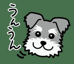 Cute! Schnauzer Stickers sticker #15586610