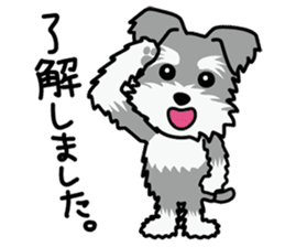 Cute! Schnauzer Stickers sticker #15586612