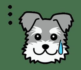 Cute! Schnauzer Stickers sticker #15586617