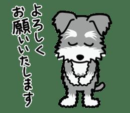 Cute! Schnauzer Stickers sticker #15586622