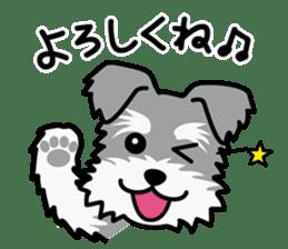 Cute! Schnauzer Stickers sticker #15586623