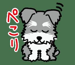 Cute! Schnauzer Stickers sticker #15586625