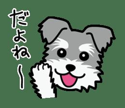 Cute! Schnauzer Stickers sticker #15586641