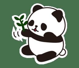 Sticker of the cute panda sticker #15652758