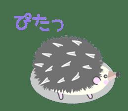 Healed cute hedgehog sticker #15657368