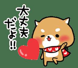 The lovely Japanese Shiba inu sticker #15728369