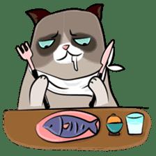Grumpy Cute Cat sticker #15734559