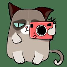 Grumpy Cute Cat sticker #15734572