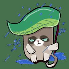Grumpy Cute Cat sticker #15734576