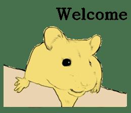 Multicolored hamster sticker #15751963