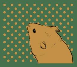 Multicolored hamster sticker #15751967
