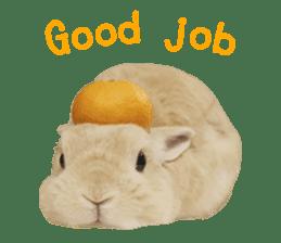 Maribow Sticker (English ver.) sticker #15754604