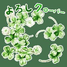 words flower shop sticker #15763582