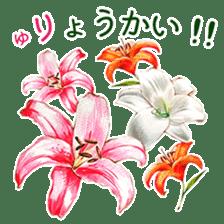 words flower shop sticker #15763583