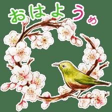 words flower shop sticker #15763586