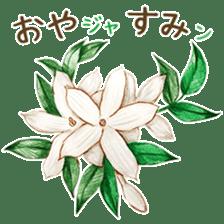 words flower shop sticker #15763589