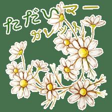 words flower shop sticker #15763594