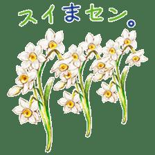 words flower shop sticker #15763610