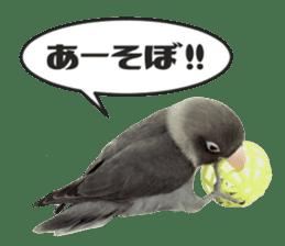 LOVEBIRDS STICKERS sticker #15764616