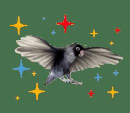 LOVEBIRDS STICKERS sticker #15764619