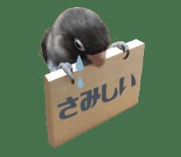 LOVEBIRDS STICKERS sticker #15764623