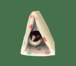 LOVEBIRDS STICKERS sticker #15764629
