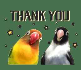 LOVEBIRDS STICKERS sticker #15764630