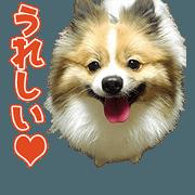 สติ๊กเกอร์ไลน์ YAsama's Sticker