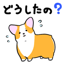 Question Corgi sticker #15771303