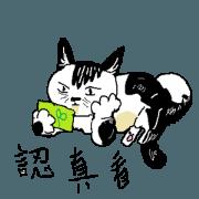 สติ๊กเกอร์ไลน์ Sesame cat's melancholy time