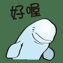 cute beluga whale sticker #15886515