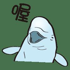 cute beluga whale sticker #15886517