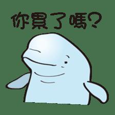 cute beluga whale sticker #15886520