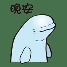 cute beluga whale sticker #15886527