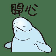 cute beluga whale sticker #15886528