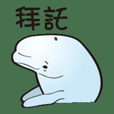 cute beluga whale sticker #15886529
