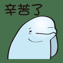 cute beluga whale sticker #15886532