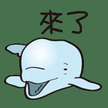 cute beluga whale sticker #15886534