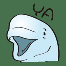 cute beluga whale sticker #15886535